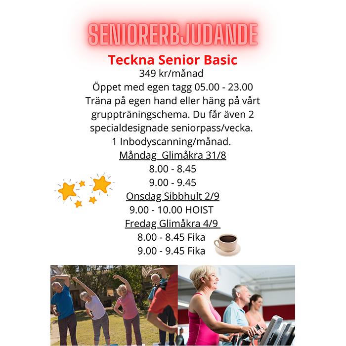 Senior Basic